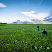 photographing landscapes montana