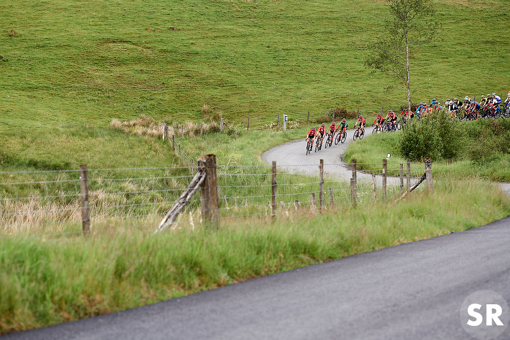 Team Sunweb set the pace on Stage 5 of 2019 OVO Women's Tour, a 140 km road race from Llandrindod Wells to Builth Wells, United Kingdom on June 14, 2019. Photo by Sean Robinson/velofocus.com