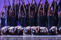 ART: 2017<br /> 