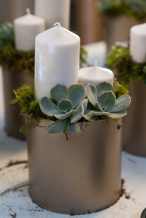 Products and serviecs offered by wedding planning and prop hire company 'Get Knotted'. The company, run by Lindsey Hunter from her base in the Scottish Borders, can design, style organise and provide all the props and items needed for a wedding. In these images the team prepare for a wedding, using plant pots made from recycled piant tins, succulents and create an up-cycled bar.