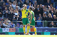Ryan Bennett of Norwich looks dejected after conceding his side&rsquo;s 2nd goal during the Barclays Premier League match at Goodison Park, Liverpool<br /> Picture by Paul Chesterton/Focus Images Ltd +44 7904 640267<br /> 15/05/2016