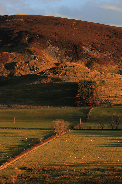Late afternoon/early evening colours over the Landscape region over Drumelzier in the Upper Tweeddale region of the Scottish Borders