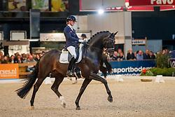 Scholtens Emmelie, NED, Indian Rock<br /> KWPN Stallionshow - 's Hertogenbosch 2018<br /> © Hippo Foto - Dirk Caremans<br /> 02/02/2018