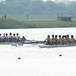 Races 72-74 J15 Ch8+