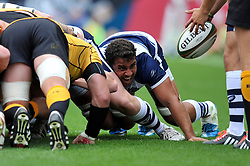 Marco Mama of Bristol Rugby in action at a scrum - Photo mandatory by-line: Patrick Khachfe/JMP - Mobile: 07966 386802 21/09/2014 - SPORT - RUGBY UNION - Bristol - Ashton Gate - Bristol Rugby v Cornish Pirates - GK IPA Championship.