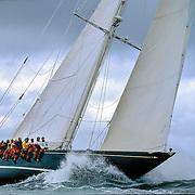 Shamrock V, voile classique, voile, voilier tradition,<br />  J class