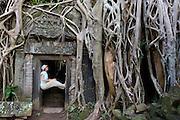 Ta Prohm - Angkor Wat, Cambodia