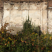 Walled garden before restoration, Fulham Palace