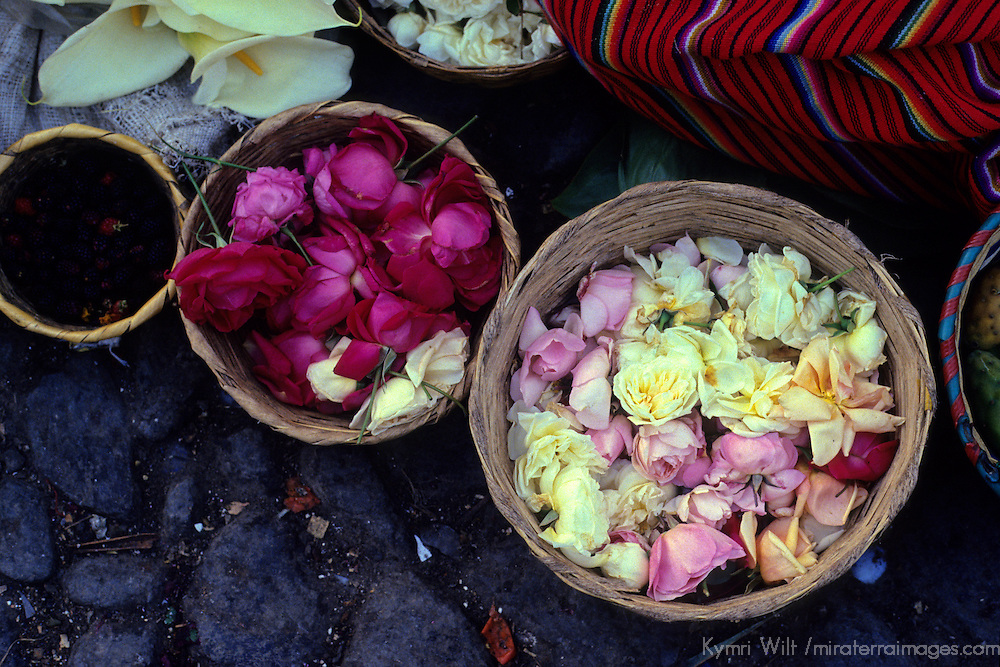 Central America, Latin America, Guatemala, Chichicastenango. Rose petals for offerings in Chichicastenango.