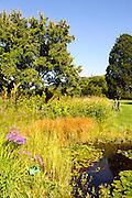 Schau- und Sichtungsgarten Hermannshof, Weinheim, Baden-Württemberg, Deutschland | Garden Hermannshof, Weinheim, Baden-Wurttemberg, Germany