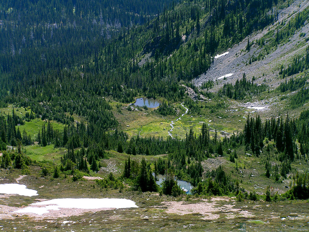 Magic Valley is located in the Olympic National Park a couple of miles south of the Obstruction Point parking area, eight miles away from Hurricane Ridge