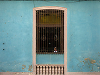 Girl looking out of a school window in Old Havana.
