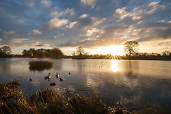 © Licensed to London News Pictures. 08/12/2017. London, UK. Birds at sunrise on a cold winter morning in Bushy Park. Forecasters recorded subzero overnight temperatures as Storm Caroline hits Britain. Photo credit: Rob Pinney/LNP