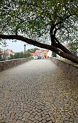 Pisek, Southern Bohemia, Czech Republic:  This old stone bridge was built before the end of the 13th century and remains in use today, connecting the two sides of town.