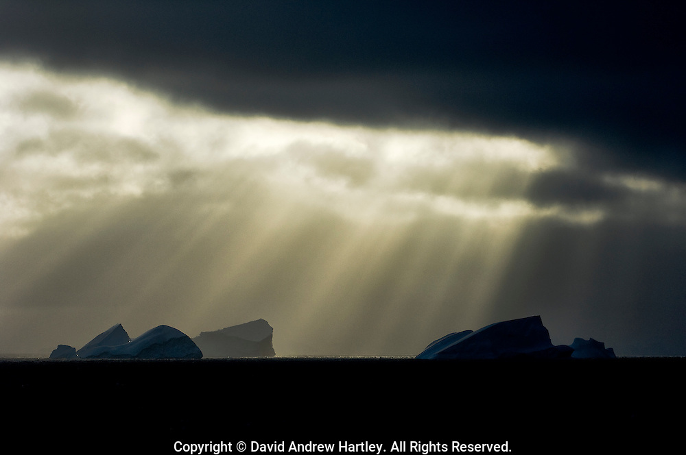 Light shining through early morning clouds form God-beams, illuminating icebergs by the South Orkneys, Scotia Sea, South Atlantic Ocean