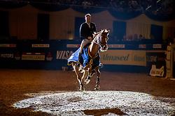 Baachmann Jens, GER<br /> Championat der Signal Iduna Cup<br /> Grosser Preis der Bundesrepublik<br /> Finale der MITSUBISHI MOTORS Masters League Saison 2019<br /> © Hippo Foto - Stefan Lafrentz