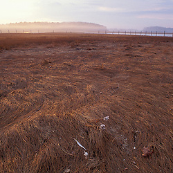 Sunrise.  Salt marsh in winter.  New Hampshire seacoast.  Odiorne Point State Park, Rye, NH