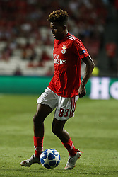 September 19, 2018 - Lisbon, Portugal - Gedson Fernandes of Benfica  in action  during Champions League 2018/19 match between SL Benfica vs FC Bayern Munchen, in Lisbon, on September 19, 2018. (Credit Image: © Carlos Palma/NurPhoto/ZUMA Press)