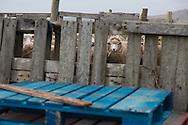 Long Island Farm in the Falkland Islands
