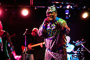 The original nasty rapper and legendary Miami songwriter Clarence Reid (aka Blowfly) got filthy and vulgar at The Firebird in Saint Louis, Missouri on February 6th, 2013.