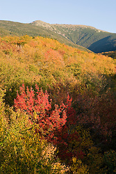 Mount Lafayette in fall in New Hampshire's White Mountain National Forest.