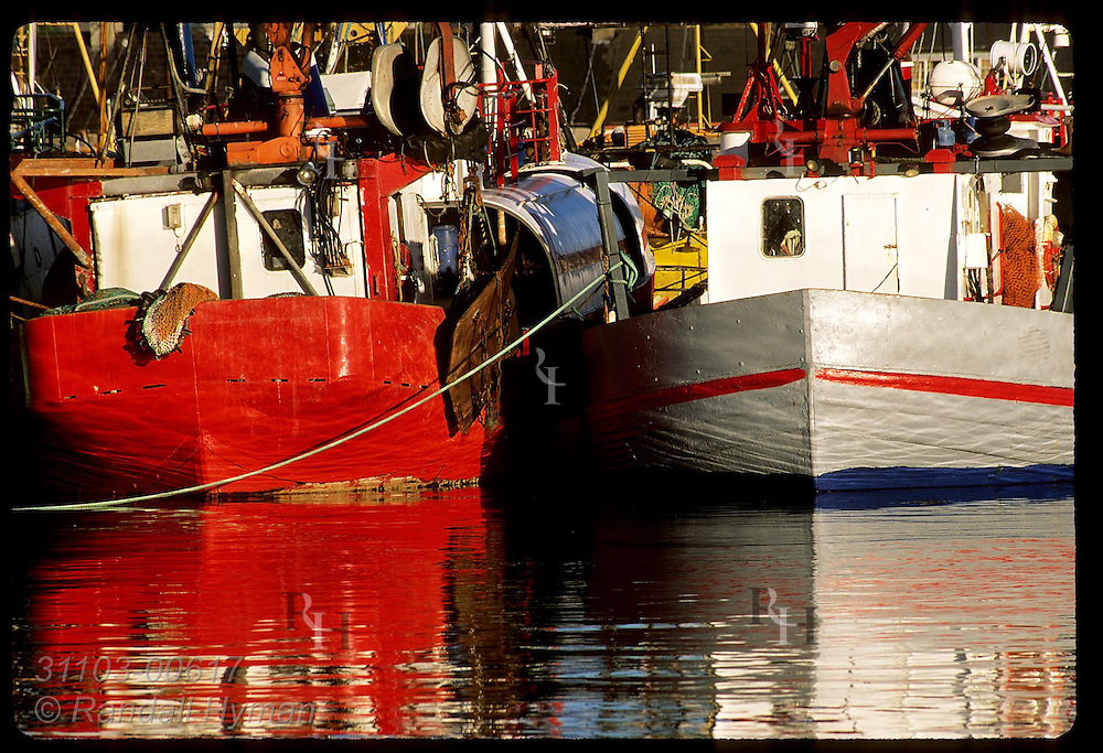 Colorful fishing boats reflect in calm evening waters of harbor; Dingle, Ireland.