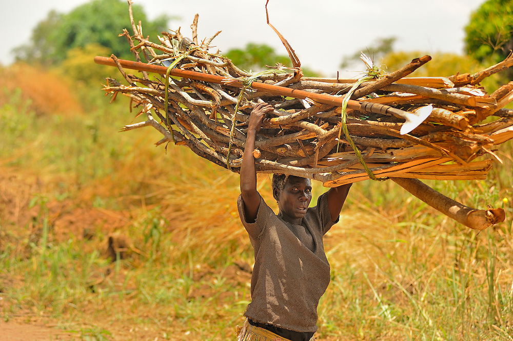 In northern Uganda, women walk long distances to haul water and cooking fuel, among other farm and family chores    After years of brutal insurgency by Joseph Kony's  Lords Liberation Army, the region is now peaceful, and recovering.