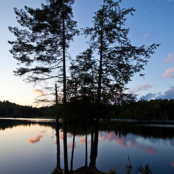 Spruce trees at sunset on the shore of Zack Woods Pond in Hyde Park, Vermont. Green River Reservoir State Park