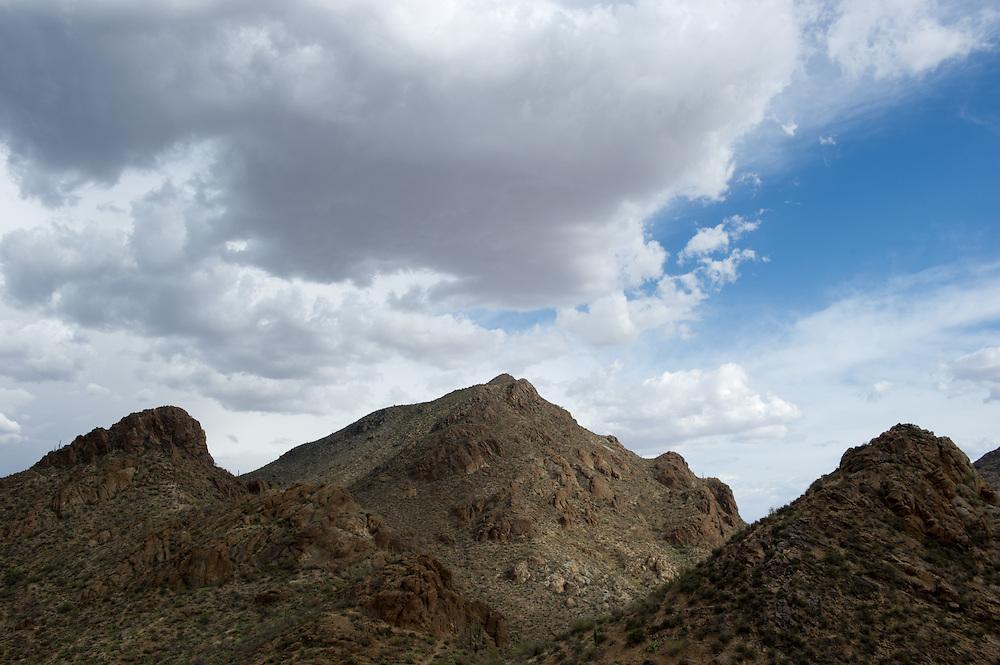 Desert Landscape, Grant's Pass, Tucson AZ