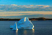 Icebergs floating in Salvage Bay of the Atlantic Ocean<br /> Eastport<br /> Newfoundland & Labrador<br /> Canada
