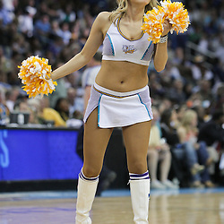 08 April 2009: New Orleans Hornets Honeybees NBA dancer performs during a 105-100 loss by the New Orleans Hornets to the Phoenix Suns at the New Orleans Arena in New Orleans, Louisiana.