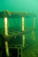 Underwater Scene-Fish Crib<br /> <br /> Engbretson Underwater Photography