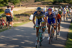 Rheden, The Netherlands - Dutch Food Valley Classic (UCI 1.1) - 23th August 2013 - Leading group with 14 riders
