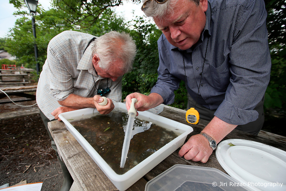 UK ENGLAND ENGLAND SHROPSHIRE LLANYBLODWEL 1JUL15 -  Anglers Robert Park and Des analyse the finds from their monthly kick sampling in the river Tanat in Llanyblodwel, part of the river Severn catchment area.<br /> <br /> jre/Photo by Jiri Rezac / WWF UK<br /> <br /> © Jiri Rezac 2015
