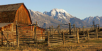 A close up of the Mormon barn near Grand Teton National Park, Wyoming. The Tetons can be seen in the distance.