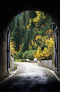 Taft Tunnel at St. Paul Pass along the Hiawatha Rails to Trails route. Bitterroot Mountains, Idaho