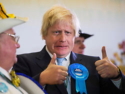 © London News Pictures. 07/05/2015. Mayor of London BORIS JOHNSON gives a thumbs up after he is declared Member of Parliament for Uxbridge and South Ruislip in the 2015 general election. Photo credit: Ben Cawthra/LNP