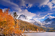Fall aspens under Sierra peaks from South Lake, John Muir Wilderness, Sierra Nevada Mountains, California USA