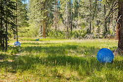 Trails and Vistas 2019 - Photo from the annual Trails and Vistas art hike. The trails were in Tahoe City for 2019.