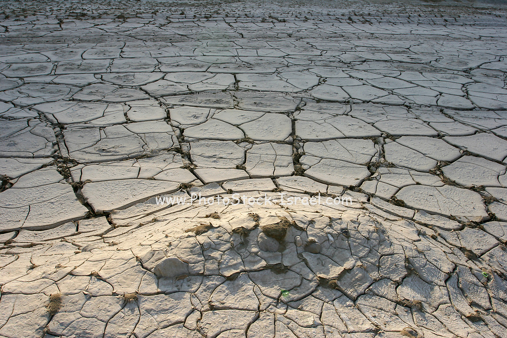 environmental concept, Water shortage and drought Dry cracked mud photographed in the Dead Sea area, Israel