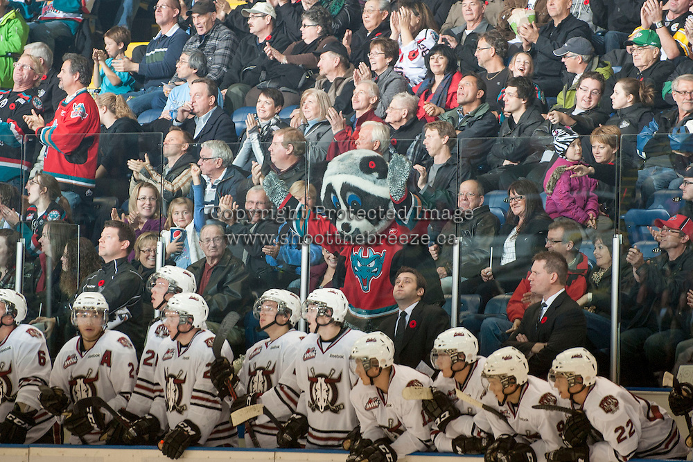 KELOWNA, CANADA - NOVEMBER 9:  Rocky Racoon taunts the bench of the  Red Deer Rebels at the Kelowna Rockets on November 9, 2012 at Prospera Place in Kelowna, British Columbia, Canada (Photo by Marissa Baecker/Shoot the Breeze) *** Local Caption ***