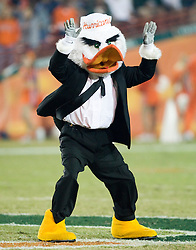 The Miami Hurricanes mascot, Sebastian got dressed up for the last UM football game in the 70 year old Orange Bowl.  The #19 Virginia Cavaliers defeated the Miami Hurricanes 48-0 at the Orange Bowl in Miami, Florida on November 10, 2007.  The game was the final game played in the Orange Bowl.