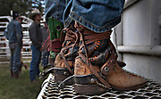 Cowboys with their boots wrapped in leather straps wait to compete during the 94th Annual Falkland Stampede in Falkland, BC (2012)