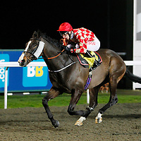 Mighty Mambo and George Baker winning the 6.55 race