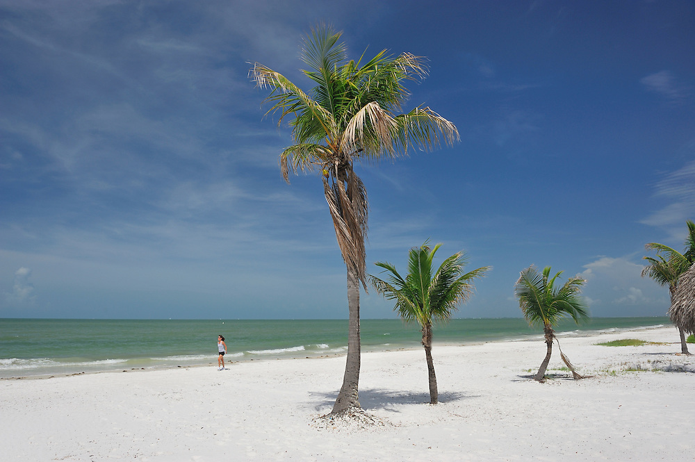 White sand Beach with Palm Trees, Fort Myers Beach, Florida, USA