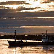 Three weeks aboard the Kong Harald. Hurtigruten, the Coastal Express. Large ship in the sunset.
