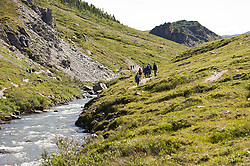 Hikers hike on the Savage Canyon Trail along the Savage River in Denali National Park and Preserve in Alaska. The Savage Canyon Trail is a two-mile loop along the river. Be prepared for wind.