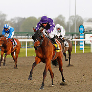 Daring Damsel and Stevie Donohoe winning the 6.05 race