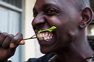 A Khat user in chews a piece of Khat at a sorting site in Maua. Many Kenyas in the area use Khat.