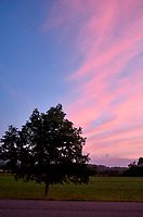 Pastel Sky at Dawn. 1 of 13 Images taken with a Leica X2 camera and 24 mm f/2.8 lens (ISO 125, 24 mm, f/2.8, 1/30 sec). Raw images processed with Capture One Pro and the panorama generated using AutoPano Giga Pro.